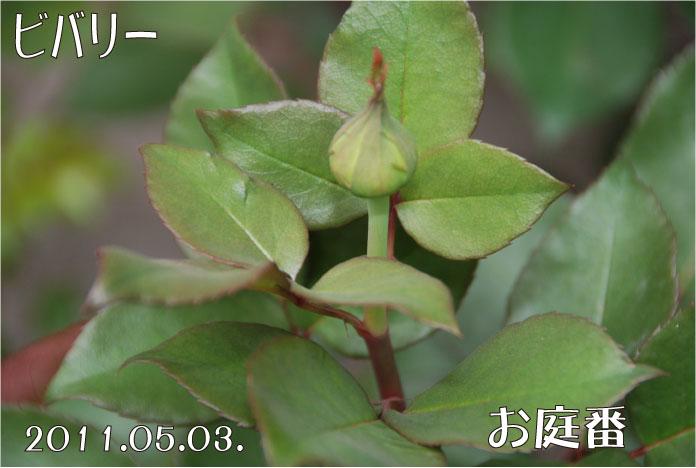 f:id:rotling:20110503105718j:image