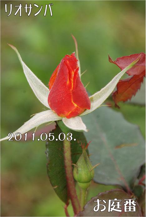 f:id:rotling:20110503105730j:image