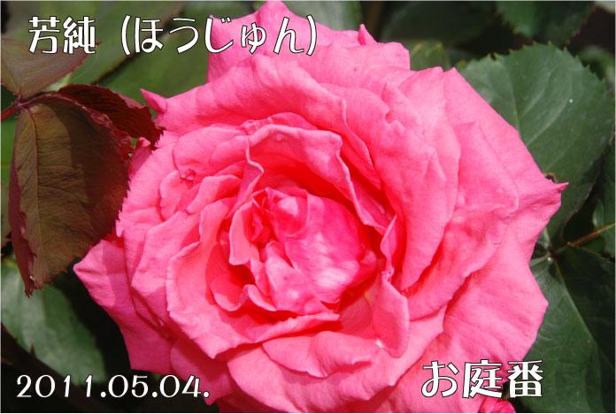 f:id:rotling:20110504110649j:image