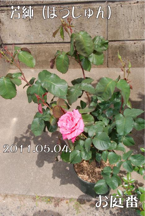 f:id:rotling:20110504110651j:image