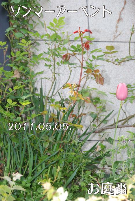 f:id:rotling:20110505101529j:image