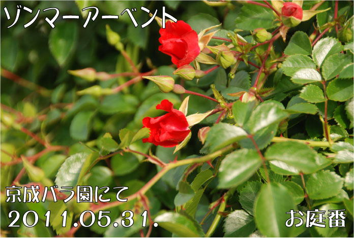 f:id:rotling:20110608072130j:image