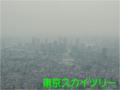 東京スカイツリーから佃島