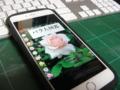 バラ大図鑑 iPhone