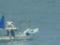 関門海峡 漁船