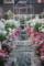 ハウステンボス バラ祭