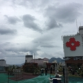 小倉井筒屋屋上バラ園2016年5月
