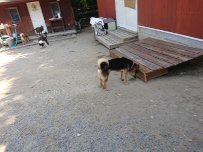f:id:roukenhome-ann:20190811192327j:plain