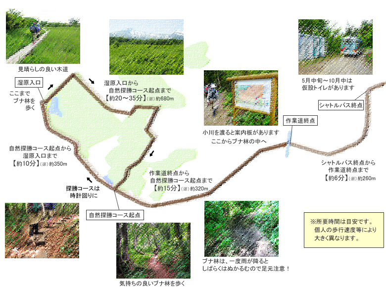 f:id:route108uemura:20190107131351j:plain
