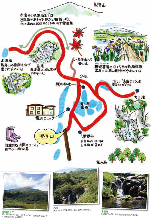 f:id:route108uemura:20190108061648j:plain