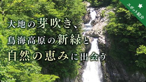 f:id:route108uemura:20190404145712p:plain