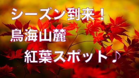 f:id:route108uemura:20190710194447j:plain