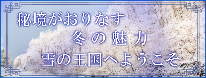 f:id:route108uemura:20191203192010j:plain