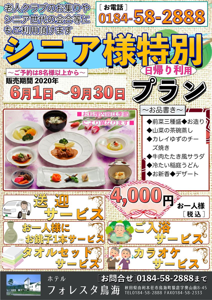 f:id:route108uemura:20200624011019j:plain