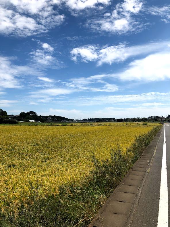 f:id:route66-jp:20190930231257p:plain
