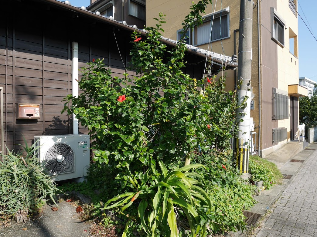 f:id:route66-jp:20200731173129p:plain