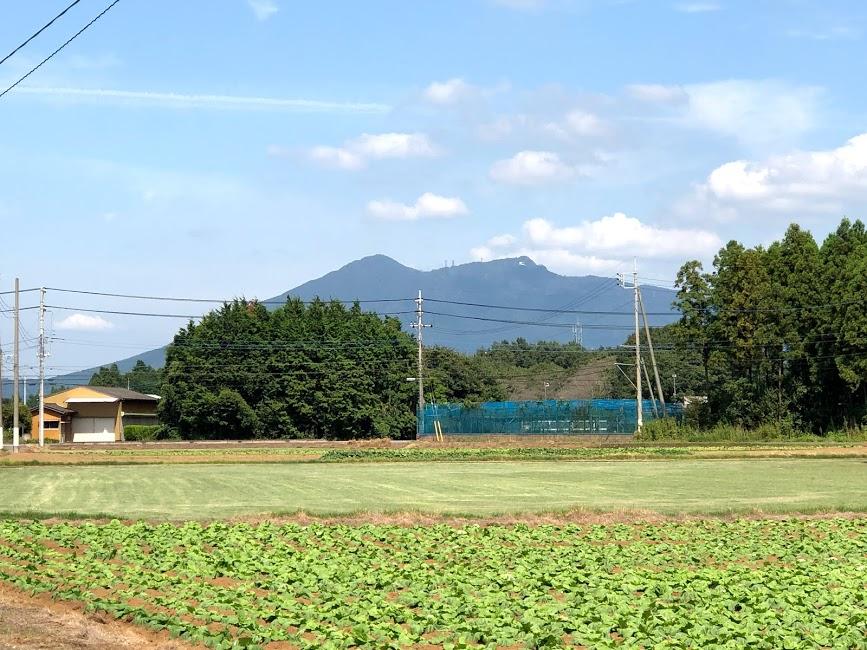 f:id:route66-jp:20200922191132p:plain