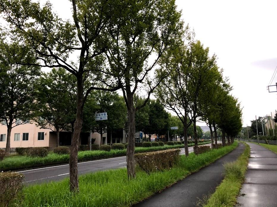 f:id:route66-jp:20201008193649p:plain