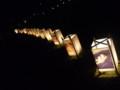 全国光とあかり祭りin奈良9