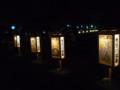 全国光とあかり祭りin奈良8