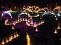 全国光とあかり祭りin奈良24