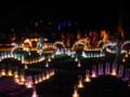 全国光とあかり祭りin奈良23