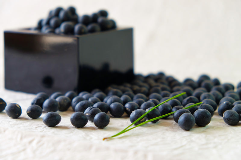 黒豆味噌の作り方。黒豆はチャングムの誓いで毒素を出す作用がある