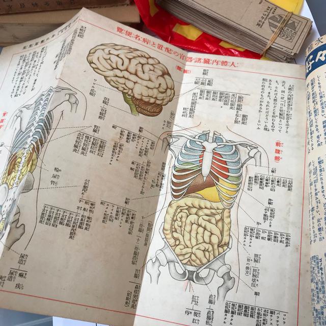 生と死をつなぐ東洋医学と妖怪と・・・