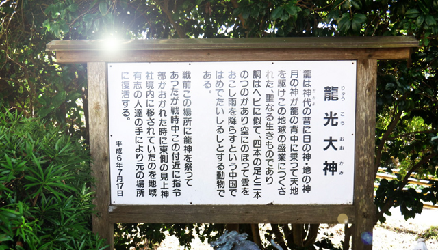 薬草魔女の気血水レッスン☆1月生募集開始☆今回は壱岐島プレゼンツ企画