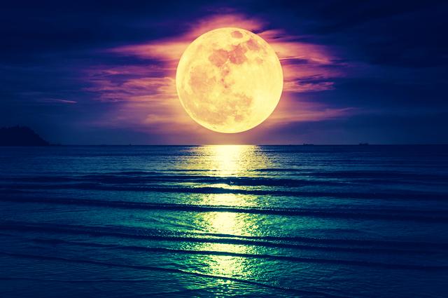 孤独と出会いの満月☆改めて気付かされた、一人ひとりのとの大切な出会い