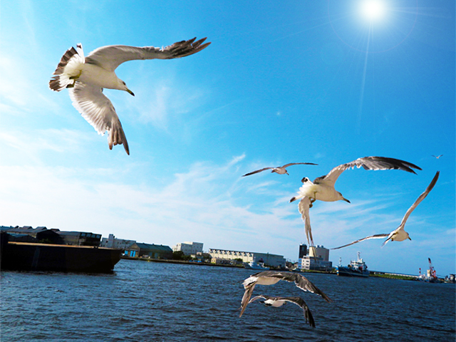 佐渡島での気付き①あの世とこの世をつなぐ場所の名は・・・