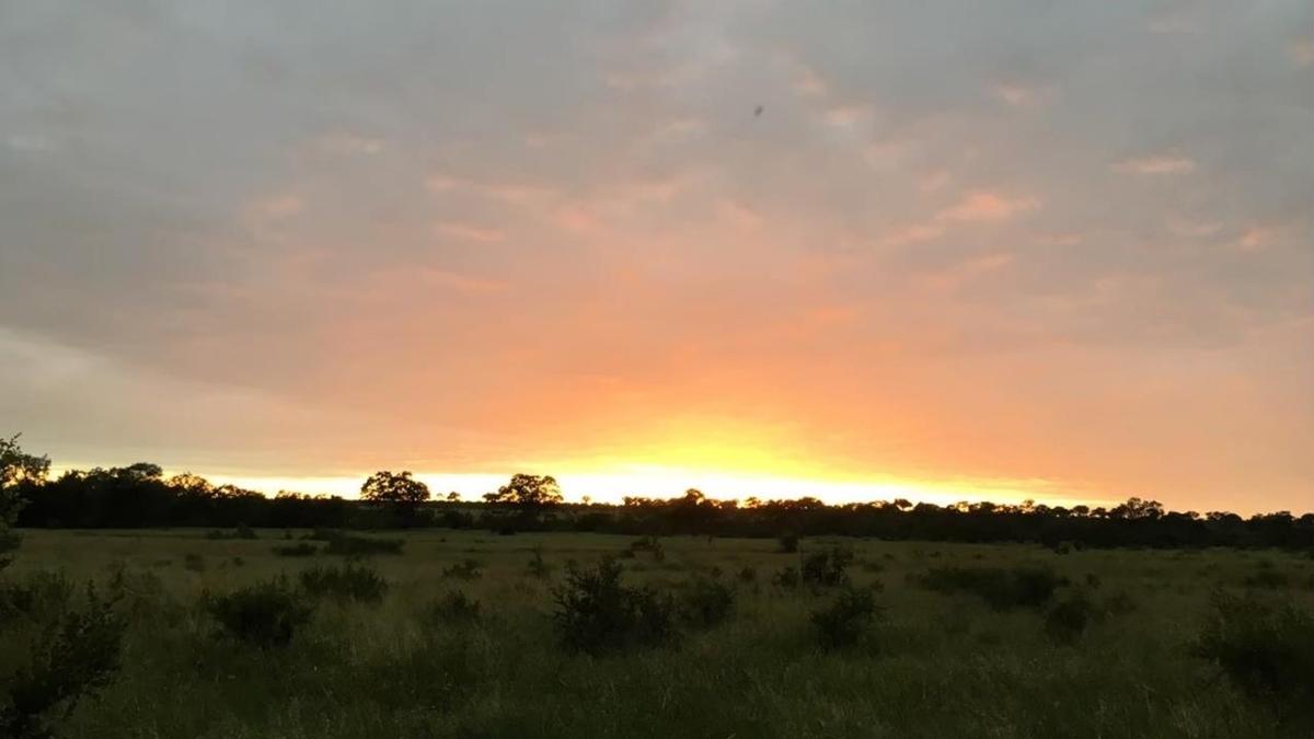 南アフリカのハネムーン旅行は超おすすめ|一生行かない場所へ行こう