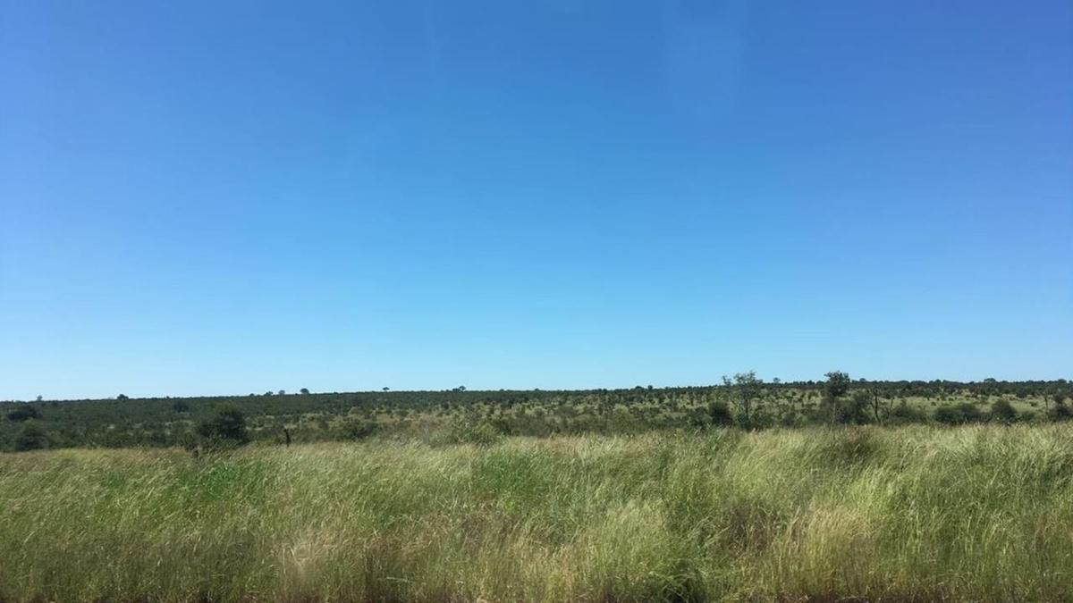 南アフリカへのハネムーン旅行の楽しかったポイン