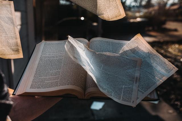 まとめ:本が高くて何も読まないのは、大きな機会損失
