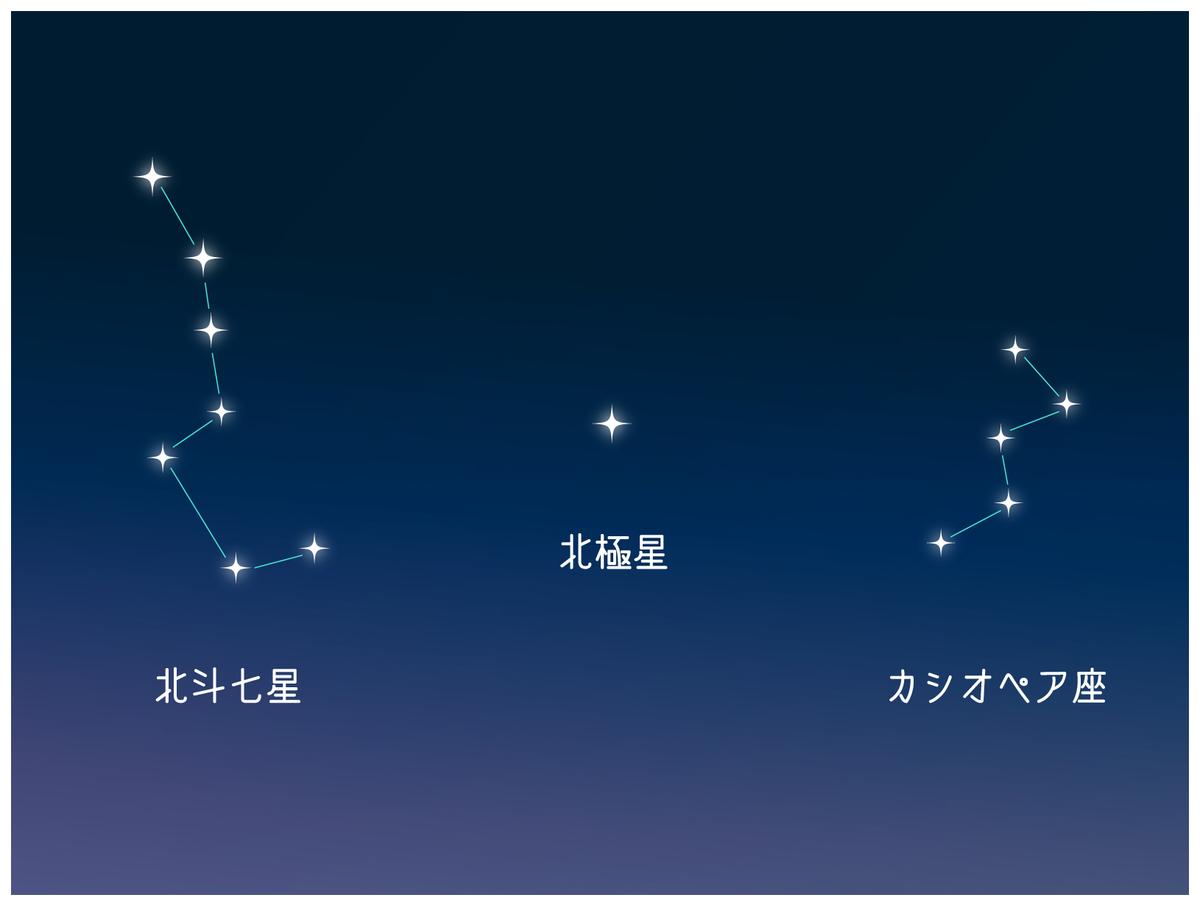 f:id:ruirui779:20210603182046j:plain