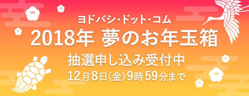 「ヨドバシカメラ 2018 お年玉箱」の画像検索結果