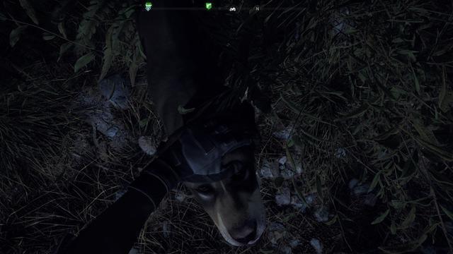 Far Cry5 犬