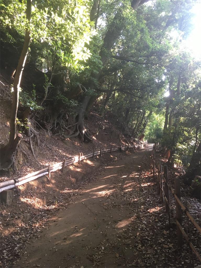 f:id:run-trail:20200530213119j:image