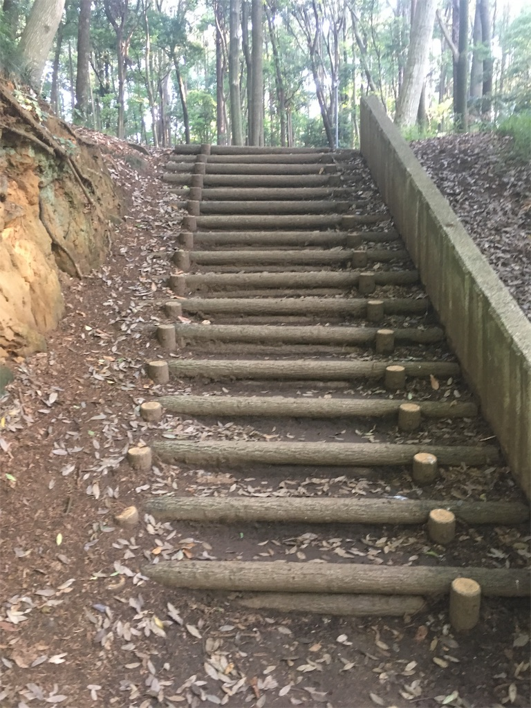 f:id:run-trail:20200530213126j:image