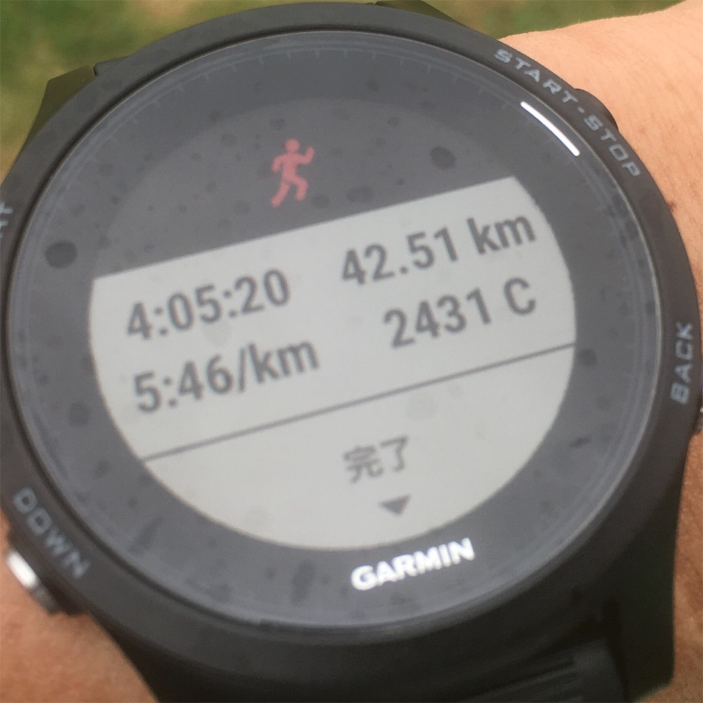 f:id:rungraph:20180418170216j:image