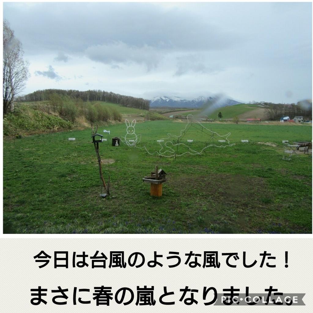 f:id:runken1125:20180503222640j:plain
