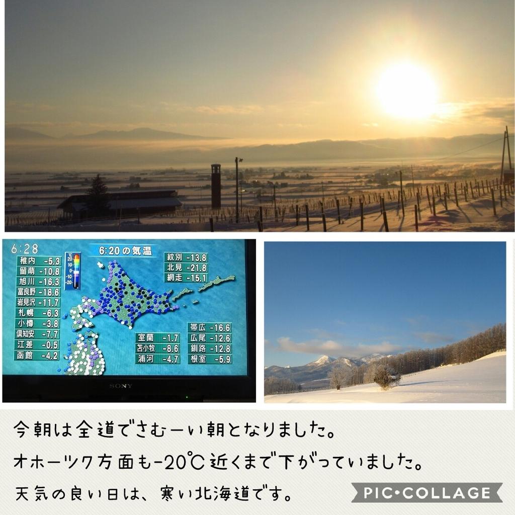 f:id:runken1125:20190130192128j:plain