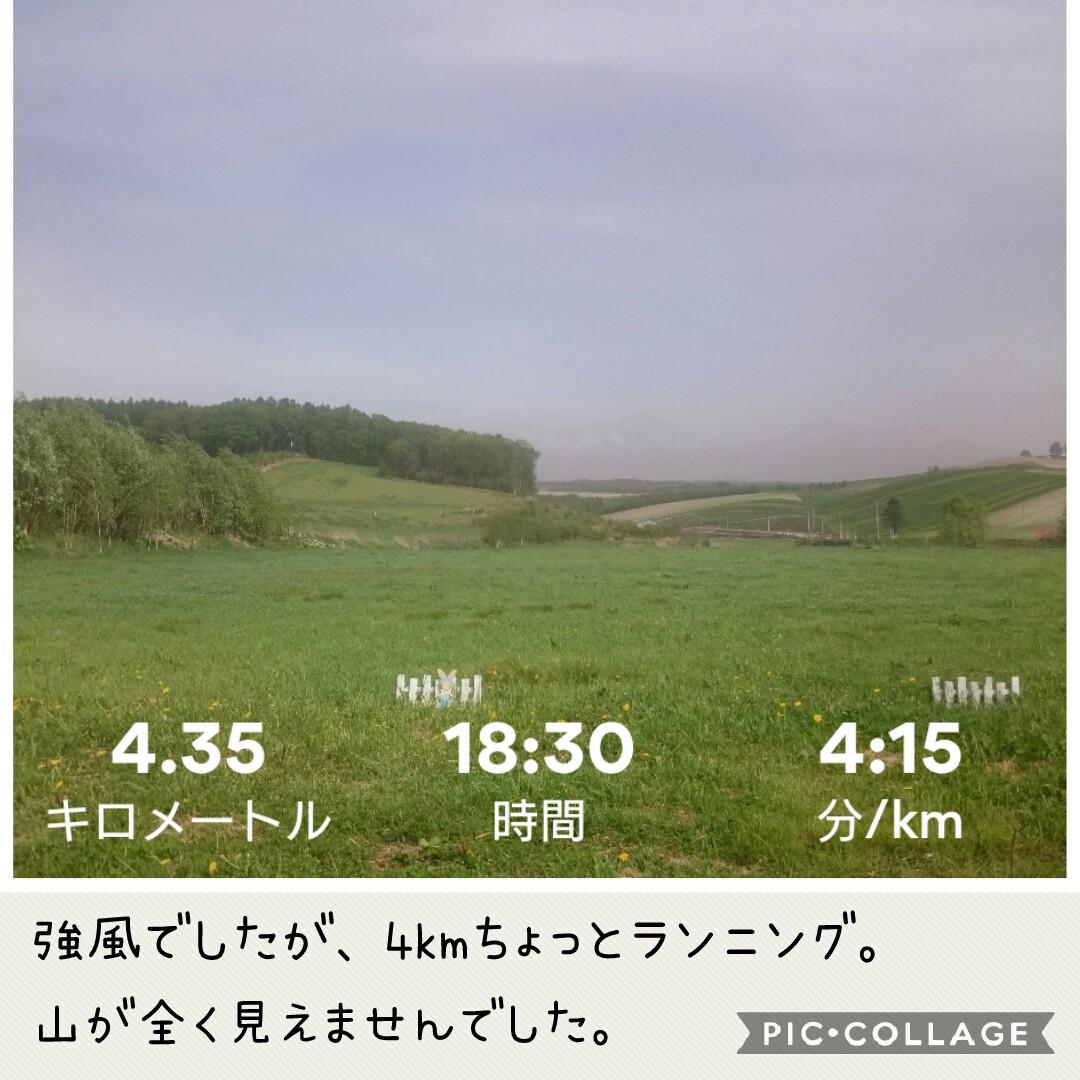 f:id:runken1125:20190520203207j:plain