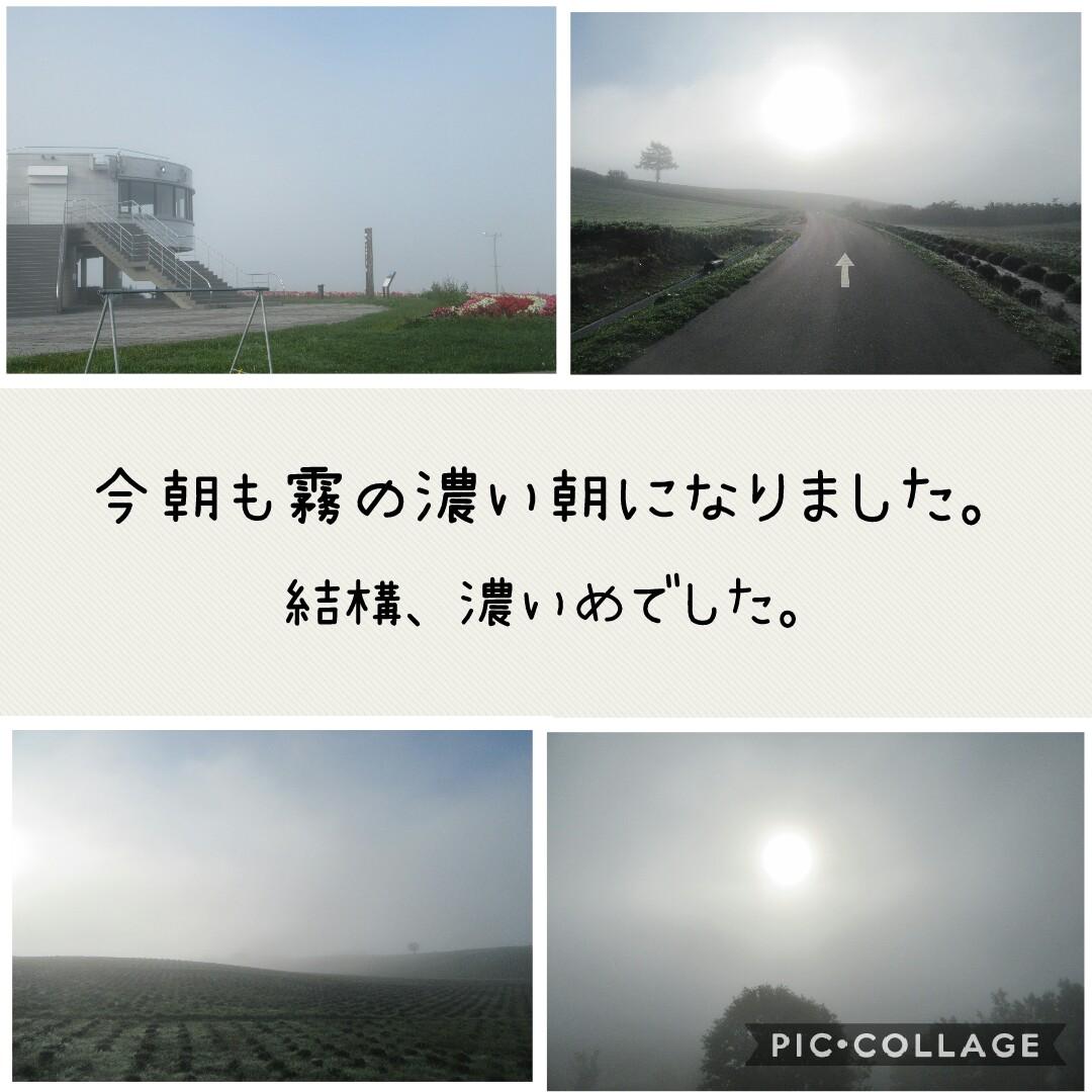f:id:runken1125:20190913210746j:plain