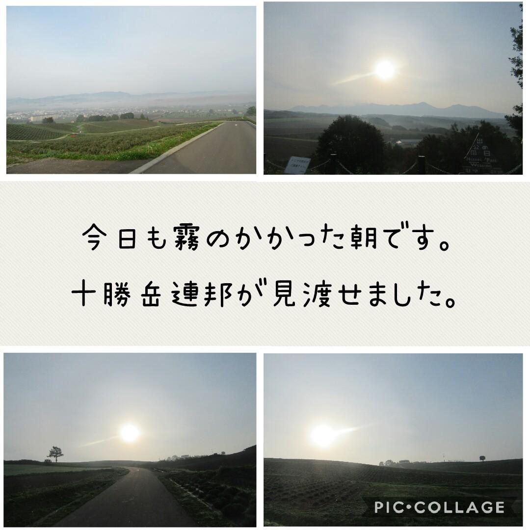 f:id:runken1125:20191004190532j:plain