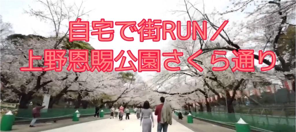 f:id:runmakino:20200330111016j:image