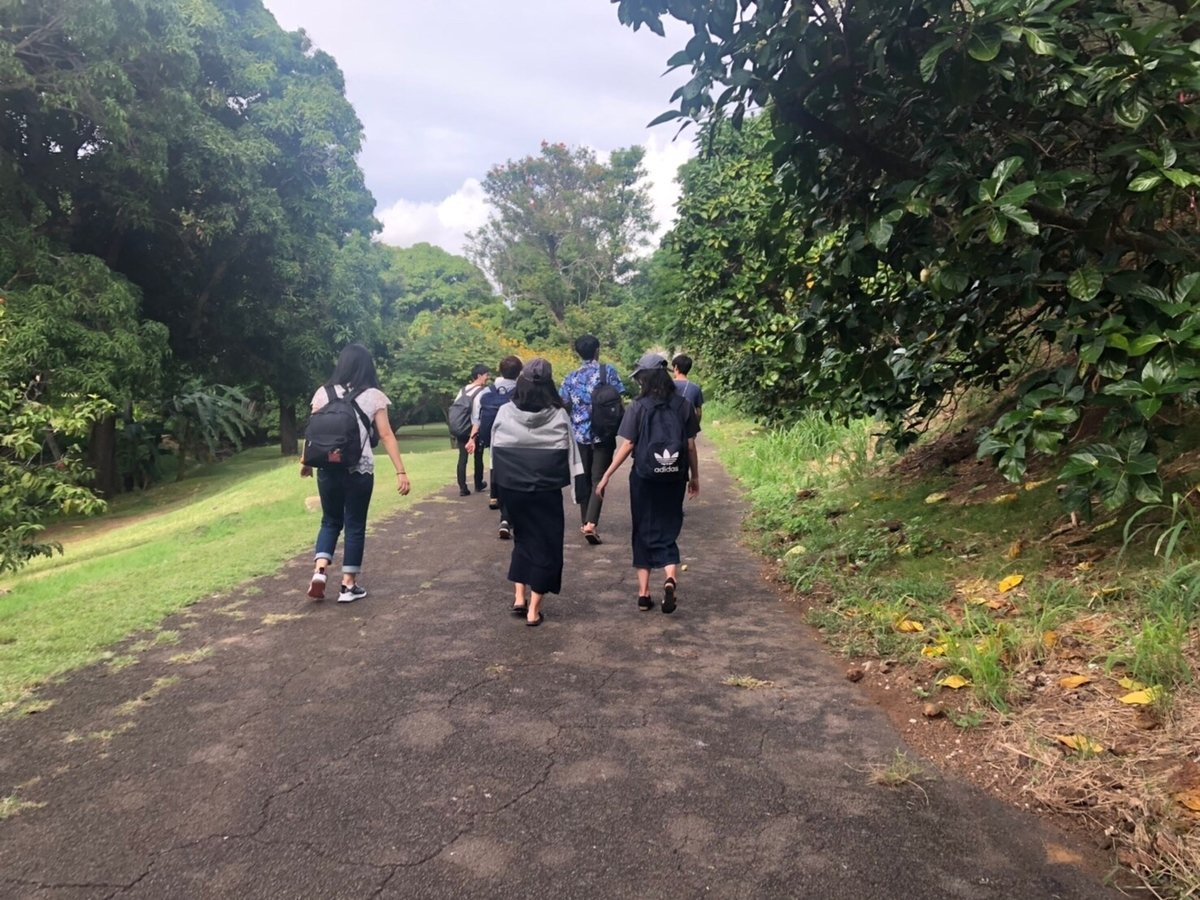 f:id:runners-honolulu:20191214195240j:plain