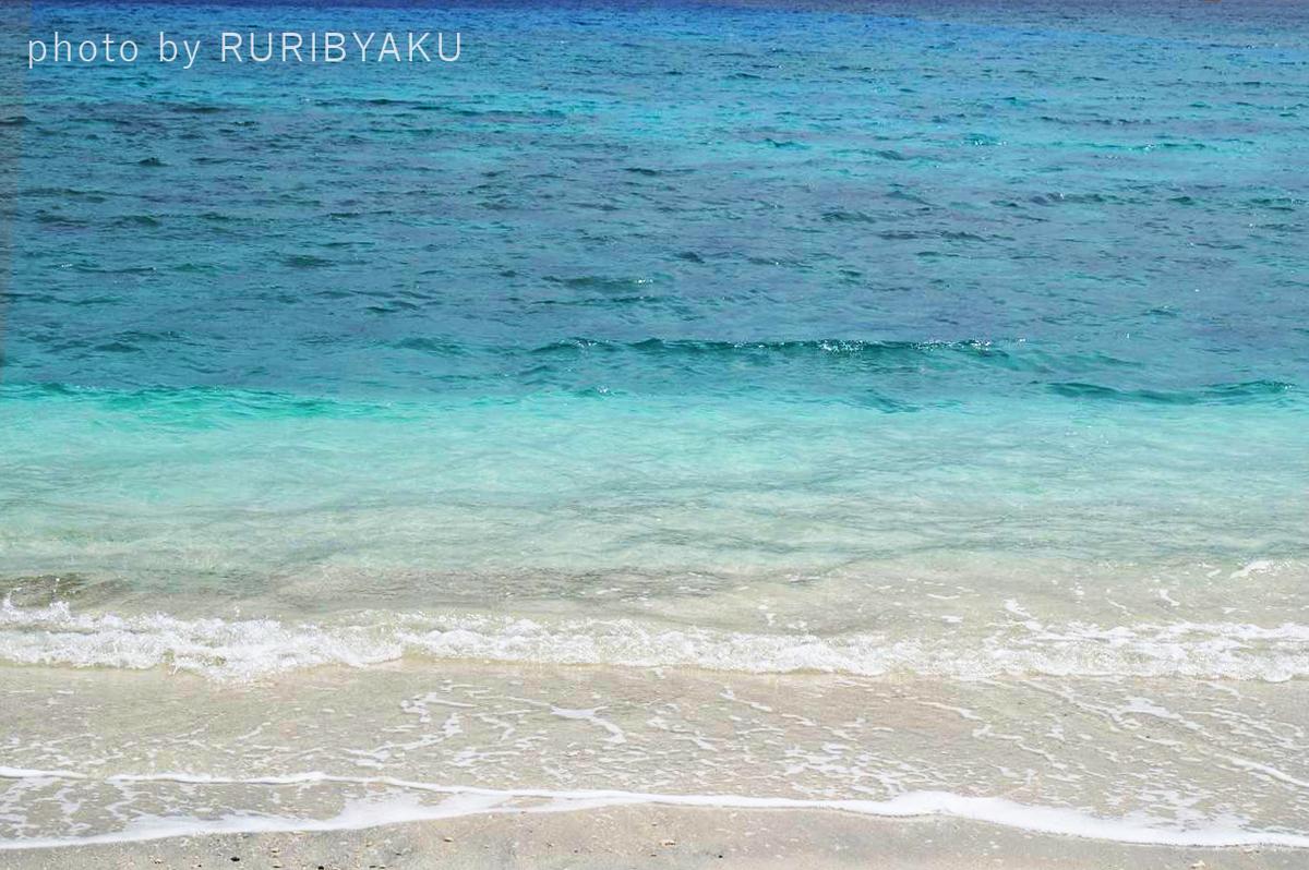 f:id:ruribyaku:20191116192643j:plain
