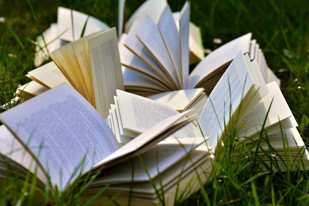 芝生の上のたくさんの本