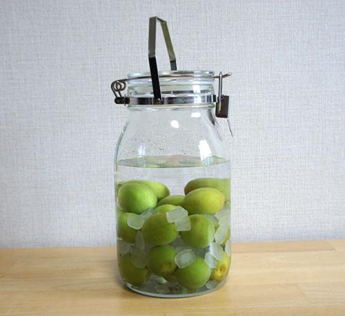保存瓶で作った梅酒